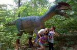 Dino Parc Rasnov la 1 an de la inaugurare
