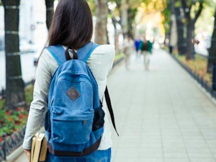 """Ministerul Educației și Cercetării recomandă ca activitățile planificate în cadrul Săptămânii """"Școala altfel"""" să se desfășoare în sediul/incinta unităților de învățământ, evitând în acest mod riscul apariției unor cazuri de îmbolnăviri."""""""