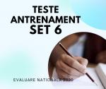 Evaluare Nationala: Setul 6 Teste de antrenament