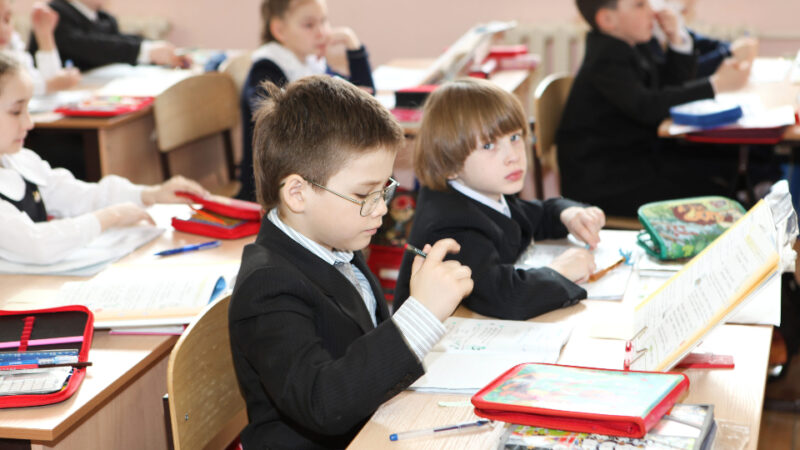 Delirul educației românești